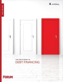 The CEOs Guide to Debt Financing